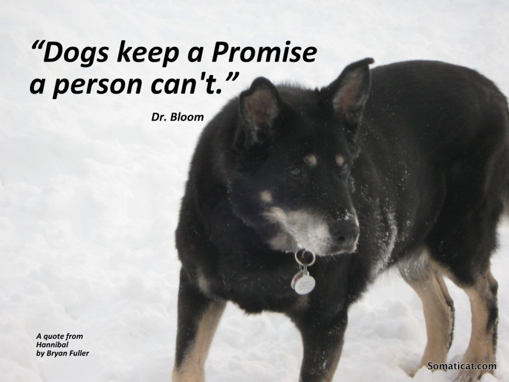 DogskeepaPromise